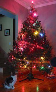 Joyeux Noël et bonne année!